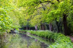 Beautiful walkpath at Bansigstoke Canal in Woking, Surrey. Lovely walkpath in springtime full of green trees and bush at Bansigstoke Canal in Woking, Surrey Stock Photography