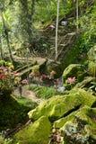 Beautiful walkway in Balinese garden, Bali, Indonesia Royalty Free Stock Photos