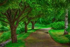 Beautiful walkway Royalty Free Stock Photos