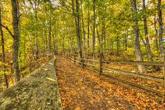 Beautiful walkway in with fall colors in Michigan USA Royalty Free Stock Images