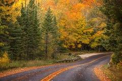 Beautiful walkway in with fall colors in Michigan USA Stock Photos
