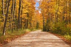 Beautiful walkway in with fall colors in Michigan USA Stock Photo