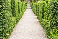 Beautiful walkway Stock Photo