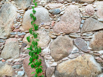 Beautiful wall of ancient fence. Wonderful wall from the stone of ancient fence stock photo