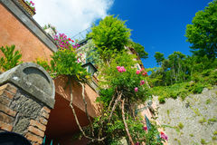 Beautiful wall decorated with various flowers in scenic town of Nemi Royalty Free Stock Photos