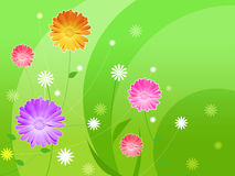 Beautiful wallpaper. With violet and pink flowers Stock Image