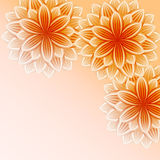 Beautiful wallpaper with orange flowers Stock Images
