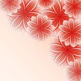 Beautiful wallpaper with red flowers Stock Photos