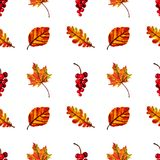 Beautiful warm seamless pattern with autumn leaves and berries. Seamless pattern with autumn berries and leaves in Orange, Red, Brown and Yellow. Perfect for Stock Photo