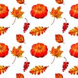 Beautiful warm seamless pattern with pumpkin, autumn leaves and berries. Seamless pattern with pumpkin, autumn berries and leaves in Orange, Red and Yellow Royalty Free Stock Photo
