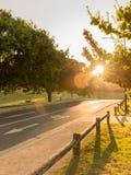 Beautiful warm sunlight on bike path Royalty Free Stock Photos