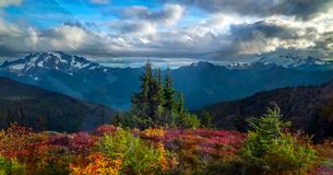 Beautiful Washington Autumn Nature Scenery - Fall foliage in Washington State.  royalty free stock photos