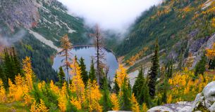 Beautiful Washington Autumn Nature Scenery - Fall foliage in Washington State.  royalty free stock images