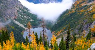 Beautiful Washington Autumn Nature Scenery - Fall foliage in Washington State.  stock photo