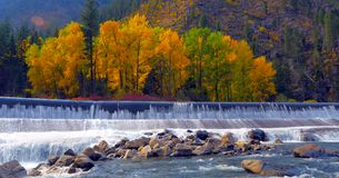 Beautiful Washington Autumn Nature Scenery - Fall foliage in Washington State.  stock images