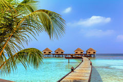 Beautiful water bungalows and the beach in Maldives Royalty Free Stock Photography