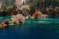 Beautiful water (JiuZhai Valley) Royalty Free Stock Image