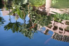Beautiful water reflections Royalty Free Stock Photo