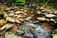 Beautiful water spring Stock Photos