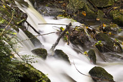 Beautiful water stream Royalty Free Stock Photography