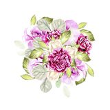 Beautiful watercolor bouquet with roses and peony flowers, eucalyptus. Stock Photos