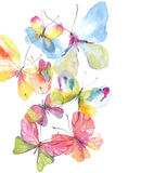Beautiful watercolor butterfly background Stock Images