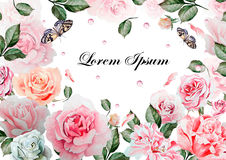 Beautiful watercolor card with roses flowers. Butterflies and plants. Royalty Free Stock Images