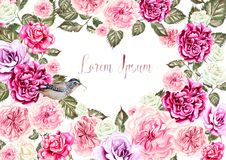 Beautiful watercolor card with roses and peony flowers. Illustration Royalty Free Stock Photos