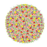 Beautiful watercolor Circle of colorful flowers Royalty Free Stock Photos