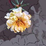 Beautiful Watercolor Cream Yellow flower Royalty Free Stock Image