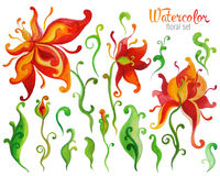 Beautiful Watercolor fantasy flower set over white background fo Stock Images
