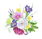 Beautiful watercolor floral clipart isolated royalty free illustration