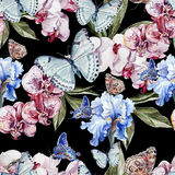 Beautiful watercolor pattern with butterflies and flowers orchid and iris. Stock Photo