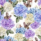 Beautiful watercolor pattern with flowers  hudrangea and cotton. Royalty Free Stock Photos