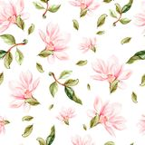 Beautiful watercolor pattern with flowers and leaves of magnolia. Illustration Royalty Free Stock Images