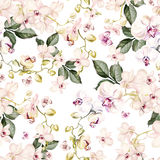 Beautiful watercolor pattern with orchid flowers. Royalty Free Stock Image