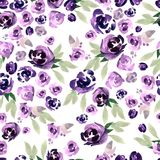 Beautiful watercolor pattern with purple and pink flowers. Stock Image