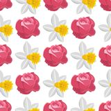 Beautiful watercolor rose flower narcissus style illustration seamless pattern background Stock Images