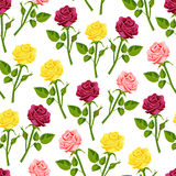 Beautiful watercolor rose flower set handmade style illustration seamless pattern background Royalty Free Stock Photos