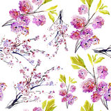 Sakura flowers. pattern Stock Photo
