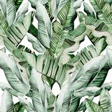 Beautiful watercolor seamless pattern with tropical leaves and banana leaves. Illustration stock illustration
