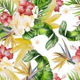 Beautiful watercolor seamless tropical jungle floral pattern bac Stock Photo