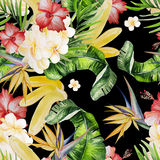 Beautiful watercolor seamless tropical jungle floral pattern bac Stock Images