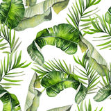 Beautiful watercolor seamless tropical jungle floral pattern bac. Kground with palm leaves. Illustration Royalty Free Stock Images