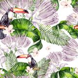 Beautiful watercolor seamless, tropical jungle floral pattern background with palm leaves, flower of roses, capers and bird tukan. Illustration vector illustration