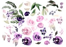 Beautiful watercolor set with rose, peony flowers and leaves. Illustration royalty free illustration