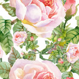 Beautiful Watercolor Summer Garden Blooming Flowers Seamless Pattern. Stock Images