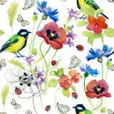 Beautiful Watercolor Summer Garden Blooming Flowers Stock Images