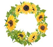 Watercolor hand painted Sunflower wreath. Beautiful watercolor Sunflower wreath, perfect decoration for invites,cards.Wedding invites card template Stock Photos