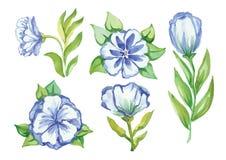 Beautiful watercolor swirls different styles Stock Photography